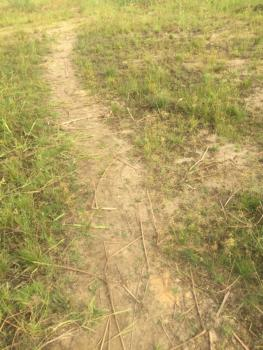 3,169.99sqm Empty Land, Asokoro District, Abuja, Mixed-use Land for Sale