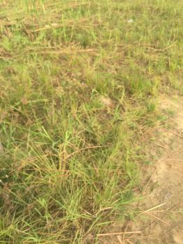 Land Measuring 3400sqm, Off T Y Danjuma Street, Asokoro District, Abuja, Mixed-use Land for Sale