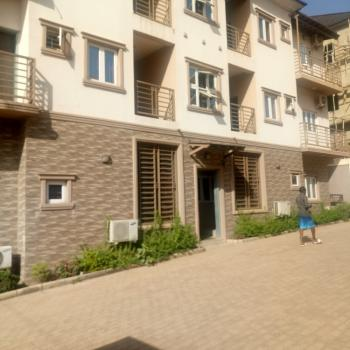 a Tastefully Finished Serviced & Furnished 2 Bedroom Flat, Durumi2 District, Durumi, Abuja, Flat for Rent