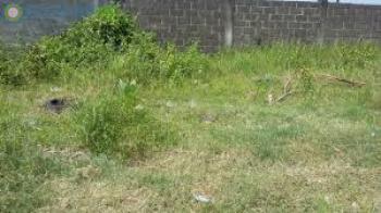 Commercial Land, Festac Link Road/ Odusanya Oduguwa Crescent., Festac, Amuwo Odofin, Lagos, Commercial Land for Sale