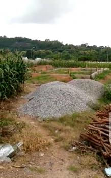 2700sqm Land Plot on Prime Location, Murtala Mohammed Road, Asokoro District, Abuja, Commercial Land for Sale