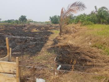 a Bare Land with Global C of O, Orchid Road, Lekki 2nd Tollgate, Lekki Phase 2, Lekki, Lagos, Residential Land for Sale