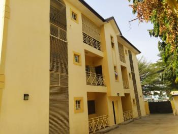 Fantastic and Spacious 2 Bedrooms with Ac, Wuse, Abuja, Flat for Rent