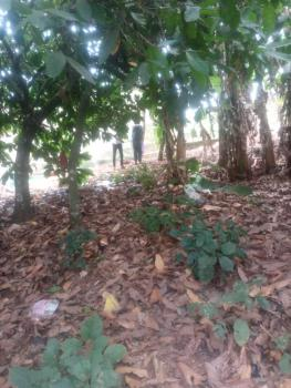 46 Hectares of Land, Airport, Akure, Ondo, Mixed-use Land for Sale