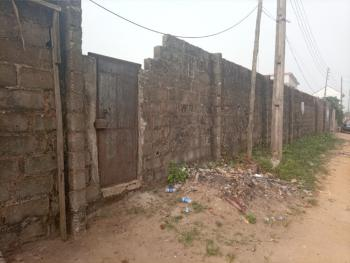 Well Located and Table Flat Dry Land, Ogbogoro, Uzuoba, Port Harcourt, Rivers, Mixed-use Land for Sale