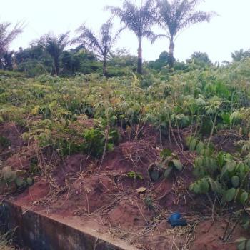 6 Plots of Land, Evans Hospitalozubulu/ihembosi Road, Ekwusigo, Anambra, Mixed-use Land for Sale