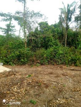Landed Property, Imota, Ikorodu, Lagos, Mixed-use Land for Sale