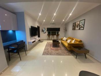 Expartriate Standard 1 Bedroom Apartment, Off Glover Road, Old Ikoyi, Ikoyi, Lagos, Mini Flat Short Let