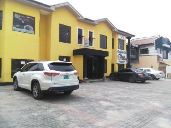 2 Large, Ensuite and Serviced Halls, Lekki Phase 1, Lekki, Lagos, Plaza / Complex / Mall for Rent