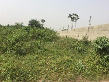 2 Plots Fenced Together Plus Uncompleted Structure, Domininon Estate, Baruwa, Ipaja, Lagos, Mixed-use Land for Sale