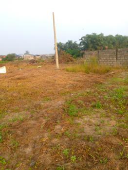 Land, Peace Estate Ipaye Twins Fajia Supermarket, Iba, Ojo, Lagos, Mixed-use Land for Sale