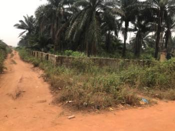 5.955 Hectares Land, Sapele Road, Benin, Oredo, Edo, Mixed-use Land for Sale