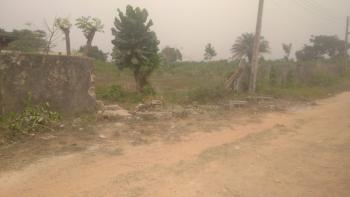 98 Hectares of Land Fenced Round, Ebute By Dangote Plant, Ebute, Ikorodu, Lagos, Mixed-use Land for Sale