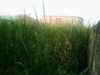 Full Plot of Land ( Fenced Round) with C/o, Harmony Estate Langbasa, Oke Ira, Ajah, Lagos, Land for Sale