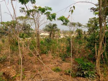 Nice 6 Plots of Land in a Developing Area Close to The Road, Balogun Oloronbo Area Off Olonde, Ologuneru Ido-eruwa Road, Ologuneru, Ibadan, Oyo, Residential Land for Sale