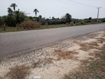Cheapest Investment Land Facing Tarred  Road, Edenview Estate, Lacampagne Tropicana Resorts, Folu Ise, Ibeju Lekki, Lagos, Mixed-use Land for Sale