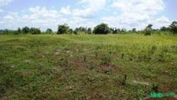 Farm Land.With An Agreement., Ilorin West, Kwara, Mixed-use Land for Sale