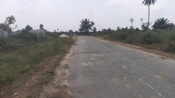 Well Located and Accessible Land, Shell Location Road, Rukpokwu, Port Harcourt, Rivers, Mixed-use Land for Sale