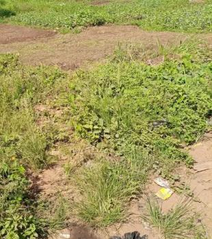 7000sqm Land, Maitama 2, Maitama District, Abuja, Residential Land for Sale