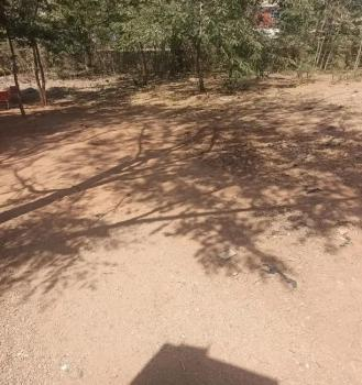 Land in Maitama 1250 Square Meters, Maitama District, Abuja, Residential Land for Sale