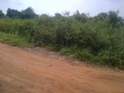 2 ½ Plots Of Land. With C Of O., Ilorin West, Kwara, Mixed-use Land for Sale