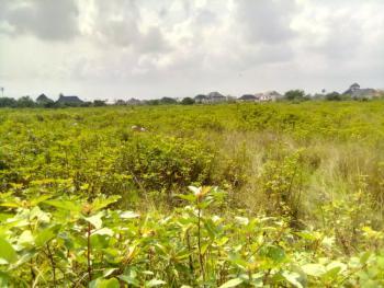 Land, Otokutu/egbo Road Opposite The Gas Filling Station, Otokutu, Otokutu, Ughelli South, Delta, Industrial Land for Sale