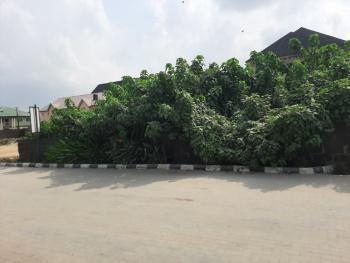 628sqm of Land  with Global  C of O, Peninsula Garden Estate, Sangotedo, Ajah, Lagos, Residential Land for Sale
