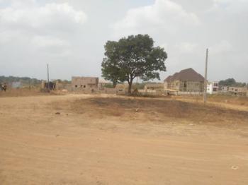 Affordable Land, Enugu Urban Area, Amechi Centenary, Doctors Quarter, Enugu, Enugu, Residential Land for Sale