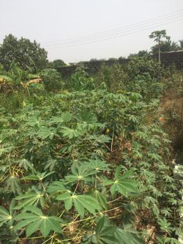 30 By 60 Quarter Plot of Dry Land, Valley View Estate, Ebute, Ikorodu, Lagos, Residential Land for Sale