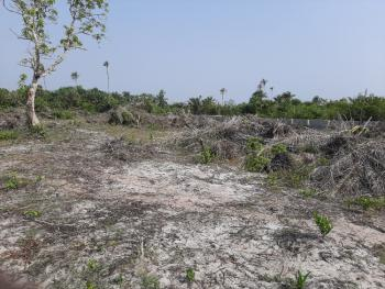 Residential Dry Land with Excision Near Dangote Refinery, Newton Park Close to Dangote Refinery, Ibeju Lekki, Lagos, Residential Land for Sale