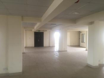 230 Sqm Office Space, Ilupeju, Lagos, Office Space for Rent