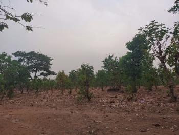 3.74 Hectares Commercial Land in a Fantastic Location, Life Camp, Abuja, Land for Sale