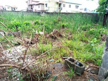 One Plot of Ready to Build Land Available in a Great Developed Estate, Segun Ajanaku Crescent, Greenville Estate, Badore, Ajah, Lagos, Mixed-use Land for Sale