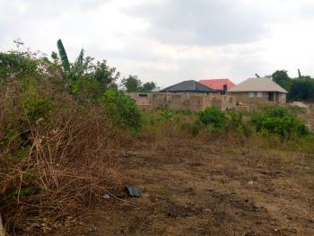 Distressed One and Half Plot of Land in a Developing Estate, Wisdom Estate, Aroro Yerokun, Off Arulogun Road, Ojoo, Ibadan, Oyo, Residential Land for Sale