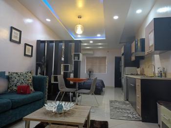 Contemporary 1 Bedroom Studio Apartments, Off Admiralty Way, Lekki Phase 1, Lekki, Lagos, Mini Flat Short Let