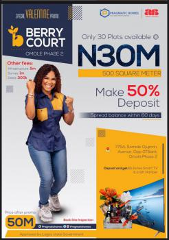 Fast Selling Land, Berry Court, Omole Ph 2 Extension Sharing Boundary with Magodo Phase 11, Omole Phase 2, Ikeja, Lagos, Residential Land for Sale