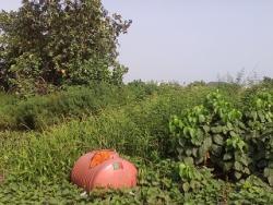 120 Acres of Land, Mowe Ofada, Ogun, Mixed-use Land for Sale