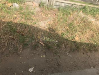 Land Measuring at 800sqm, Carlton Gate Chevron Drive, Lekki, Lagos, Land for Sale