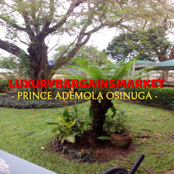 The Only Self Serviced Semi Detached House + Large Private Garden, Central, Old Ikoyi, Ikoyi, Lagos, House for Rent