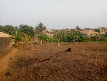 Standard 3 Plots of Land in a Developing Estate, Progressive Lane, Asaaju Estate Off Liberty Academy Road, Akala Express, Oluyole, Oyo, Residential Land for Sale