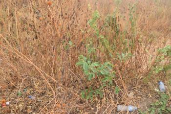 132 Units of 600sqm of Land, at Pinnacle Estate Karsana, Karsana, Abuja, Residential Land for Sale