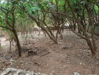 Distress 2100sqm Land, Asokoro Extension, Asokoro District, Abuja, Residential Land for Sale
