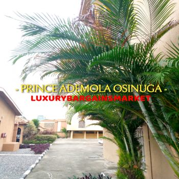 Centrally Located 12nos 3 Bedroom Apartments + Garden+pool+ Gym, Central, Old Ikoyi, Ikoyi, Lagos, Flat for Rent