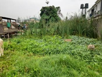 Prime and Regular Shaped 320sqm Land, Ifako, Gbagada, Lagos, Mixed-use Land for Sale