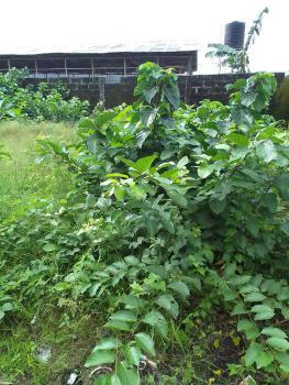 a Plot of Land, Beside Peninsula Garden Estate, Off Blenco Supermarket, Sangotedo, Ajah, Lagos, Residential Land for Sale