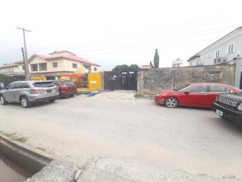 Sweet Land in Great Location (c/o), Omorire Johnson Street, Lekki Phase 1, Lekki, Lagos, Mixed-use Land for Sale