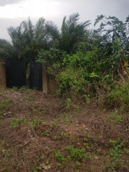Massive Fenced and Gated Roadside Plot, Mbak Road, Osongama Estate, Uyo, Akwa Ibom, Residential Land for Sale