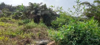 Two Plots of Land, Lafenwa-itele Road, Olugbode, Perfect Peace Estate, Ado-odo/ota, Ogun, Mixed-use Land for Sale