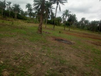 9 Acres of Land Facing Main Road, Olowa Village,along Ibadan/ijebu Ode Road, Idi Ayunre, Oluyole, Oyo, Commercial Land for Sale