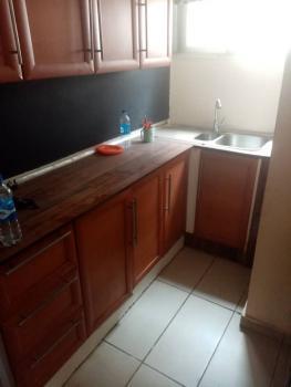 Mini Flat, Falomo, Ikoyi, Lagos, Mini Flat for Rent